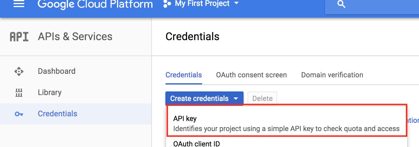 Google Vision API using Raspberry Pi and Node – Ladvien's Lab